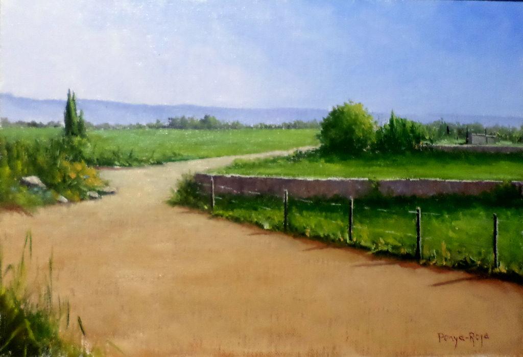 campos de pasto