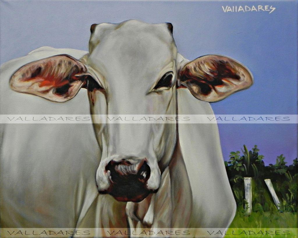 Vaca jorge valladares di guez - Cuadros de vacas ...