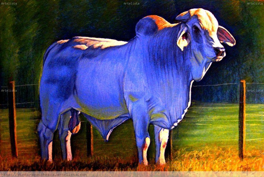 Nelore alejandro arnutti della porta - Cuadros de vacas ...