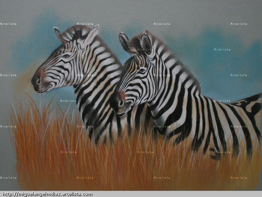 Dos cebras papel media mixta animales - Cuadros de cebras ...