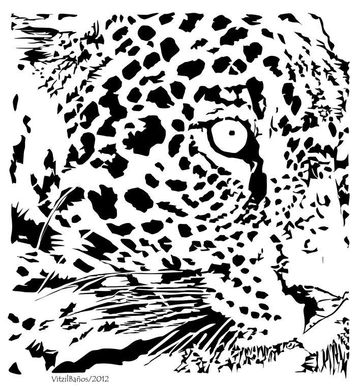 Como dibujar un jaguar - Imagui
