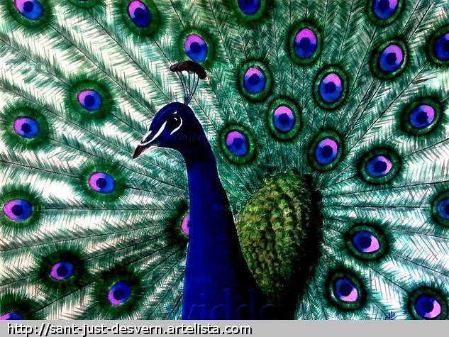 CRISTATUS AZUL (REPRODUCCION LIENZO/BASTIDOR) Tinta Lienzo Animales