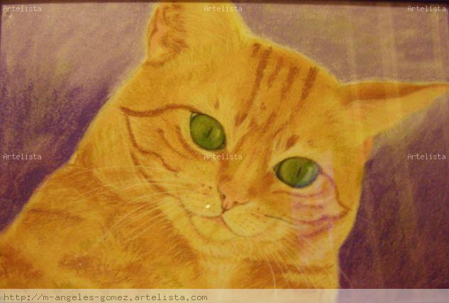 Homer Papel Pastel Animales