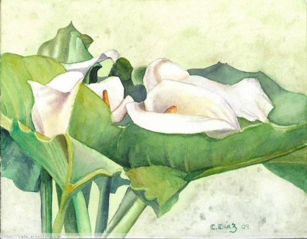 lilas calas#1 Acuarela Papel Floral