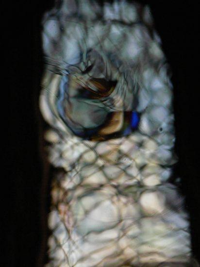 Sueños circulares I Otras temáticas Color (Digital)