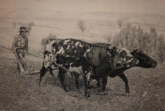 Obra Maestro Guillermo Rincón M 100% Original Con Certific Animales Lápiz (Negro) Piel
