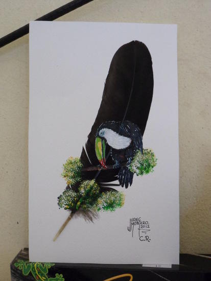 otro tucan Animals Acrylic Others