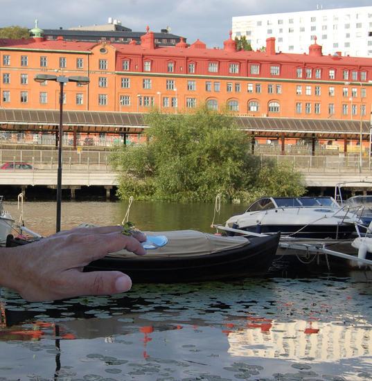 folkuniversitet stockholm