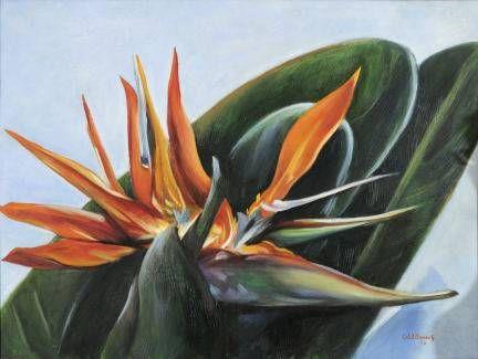 aves del paraiso Óleo Lienzo Floral