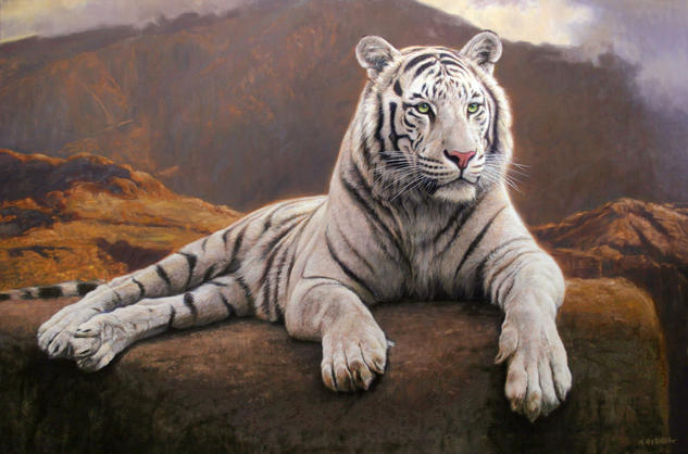 Desde la cima Oil Canvas Animals
