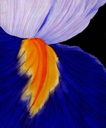 Iris Lu Torralba Otros Tela Floral