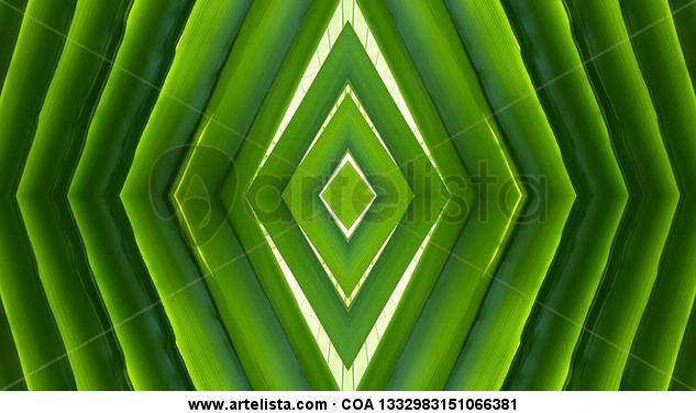 verde 2 Papel Otros