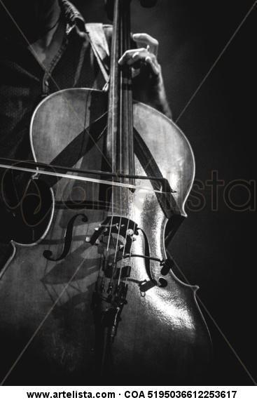 violonchelo (Cello) Blanco y Negro (Digital) Otras temáticas