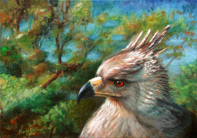 Aguila Coronada Canvas Oil Animals