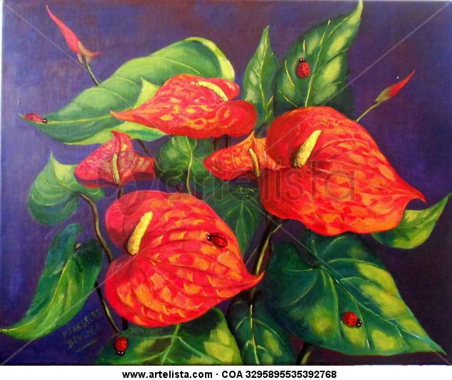 anthurium flor