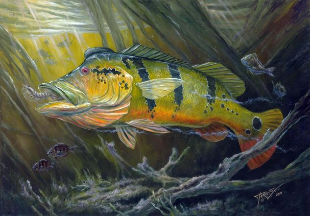 The Great Peacock Bass Canvas Oil Animals
