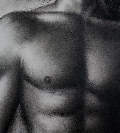 torso Carboncillo