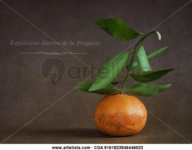 la mandarina tuneada y las texturas