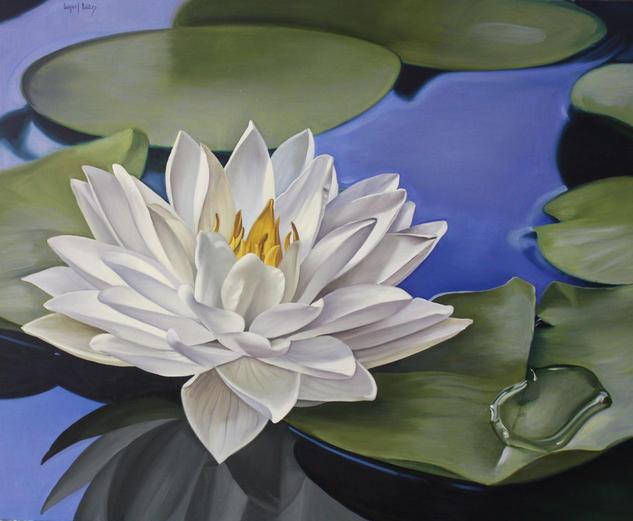 Nenufar I  Lienzo Óleo Floral