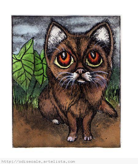 Gato atento, grabado Aguafuerte