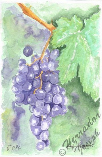La uva fruta d' el sol Papel Acuarela Otros