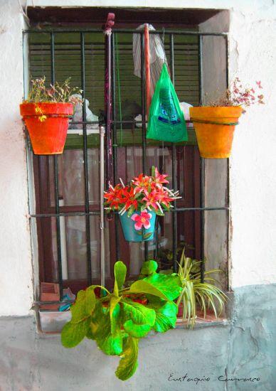 Elementos y mazetas colgados en la ventana Otras temáticas Color (Digital)