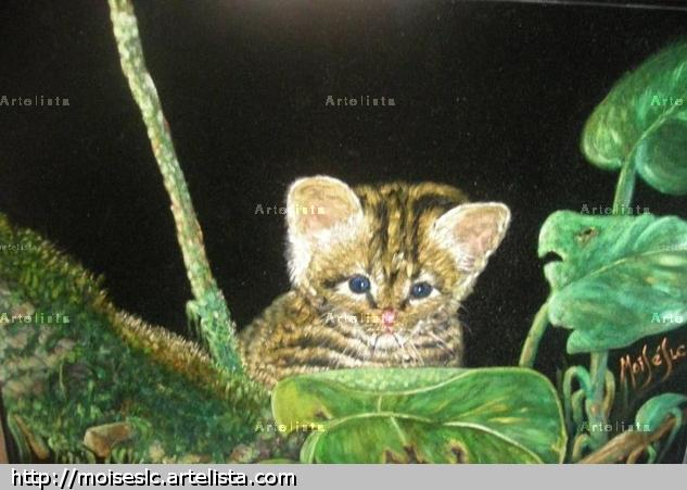 tigrillo amazónico- Perú Óleo Tela Animales