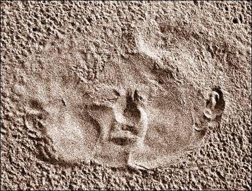 Le Baiser de Narcisse Conceptual/Abstracto Técnicas alternativas