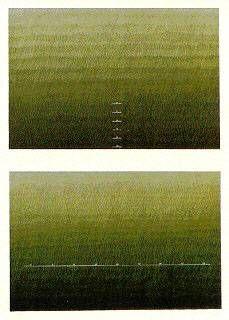 Composición Abstracta Litografía