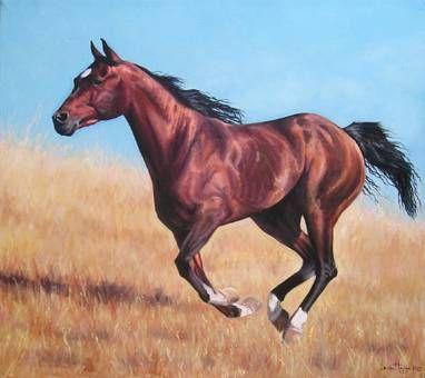 caballo al galope