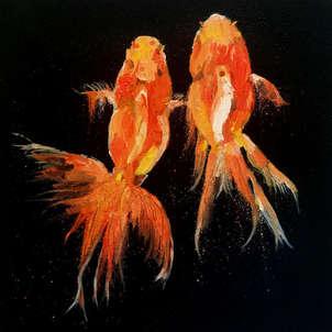 peces naranjas