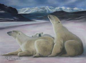 osos polares al sol