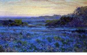 paisaje bluebonnets