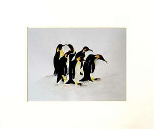 pinguinos en recreo