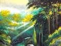 Farallones de Cali- Selva húmeda - 233
