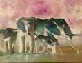 serie elefantes   fanfasia 1