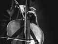 violonchelo (Cello)