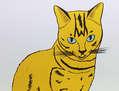 Muur Cat