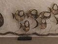 Pirañas 1