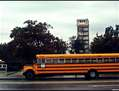 Bus Escolar