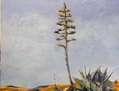 Cabo de Gata I