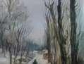 Paseo por la nieve