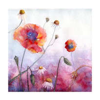 poppies, amapolas, flores, floral abstract watercolor
