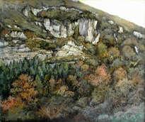 bosque de hayas en otoño -cantabria