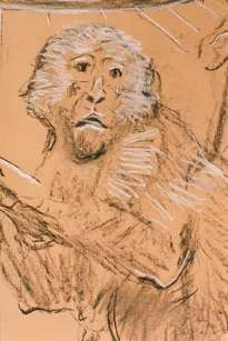 animales/simios/mural/1998
