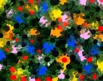 black daisy.