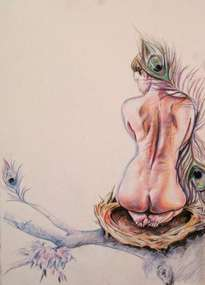la mujer del nido.