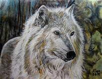 mi lobo