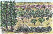 paisaje y ciudad de talavera al fondo