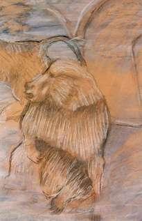 animales/simios/mural 1998